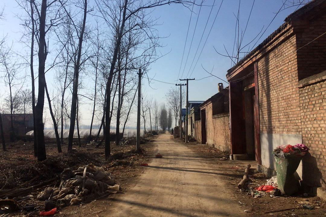 通往村子的泥路。