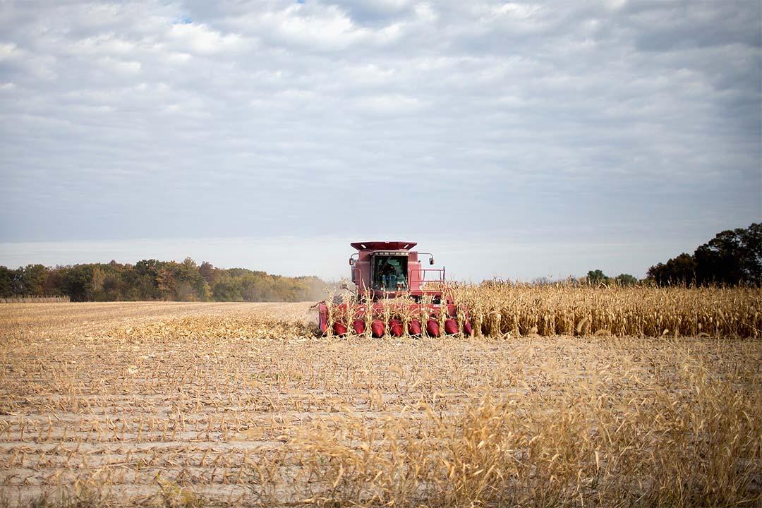 2015年10月22日,美國愛荷華州,農夫在收割農作物。