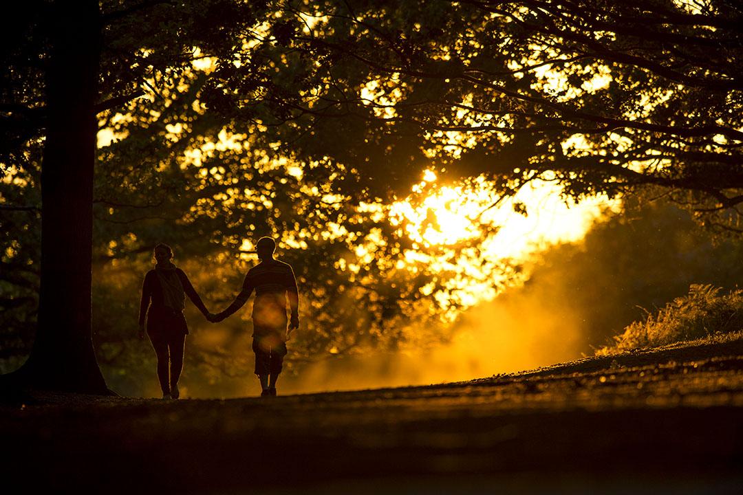 一對情侶在夕陽下散步。