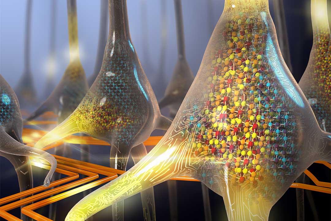 IBM發明世界首個人造神經元。