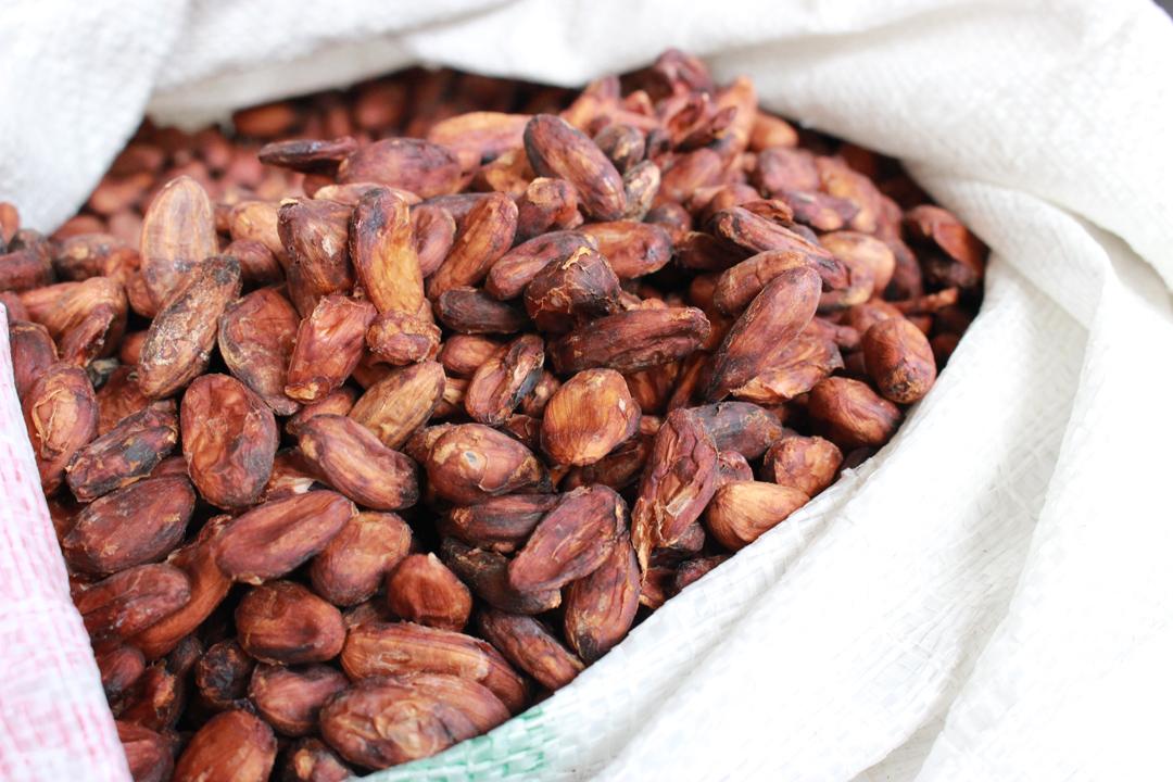 台製巧克力目前是以全豆精煉,理應更有機會表現可可豆完整的風味與營養。