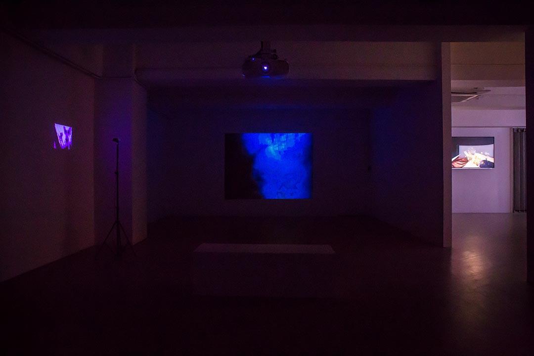 阿比查邦的展覽:《狂中之靜》。