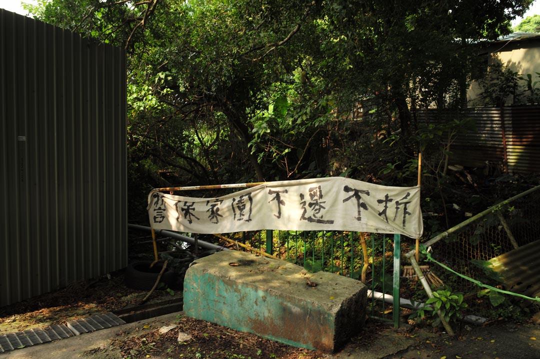 受橫洲發展計劃影響的3條非原居民村-鳳池村、永寧村、楊屋新村,居民在不同地方掛上抗議橫額。