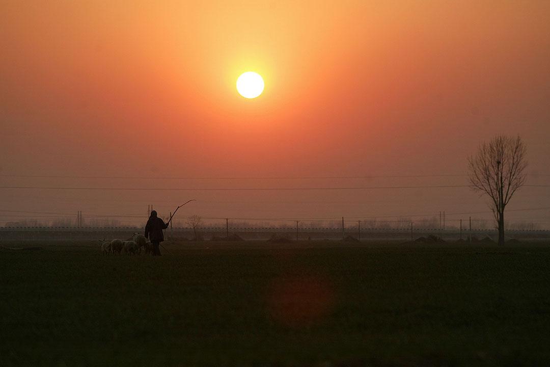 中國河南省一個農村。