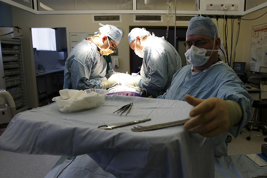 3D打印人體腎臟組織部件接近實現。