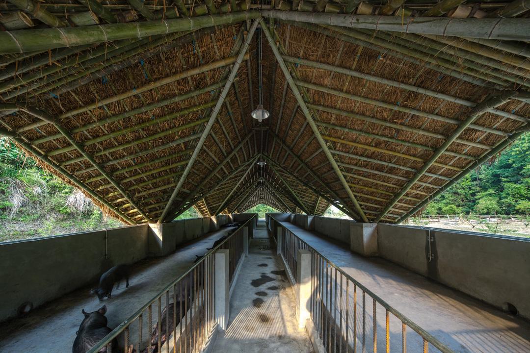 臨安太陽公社主要採用當地的毛竹、溪卵石、茅草等材料建造。