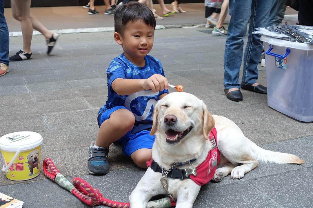 協會時常舉辦活動讓民眾可以親近並且多瞭解導盲犬。