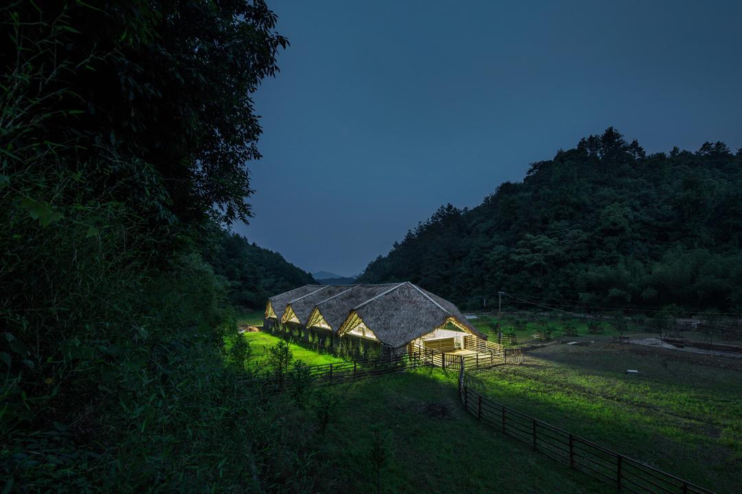 團隊希望臨安太陽公社能為「新農業生產定義新形象」。
