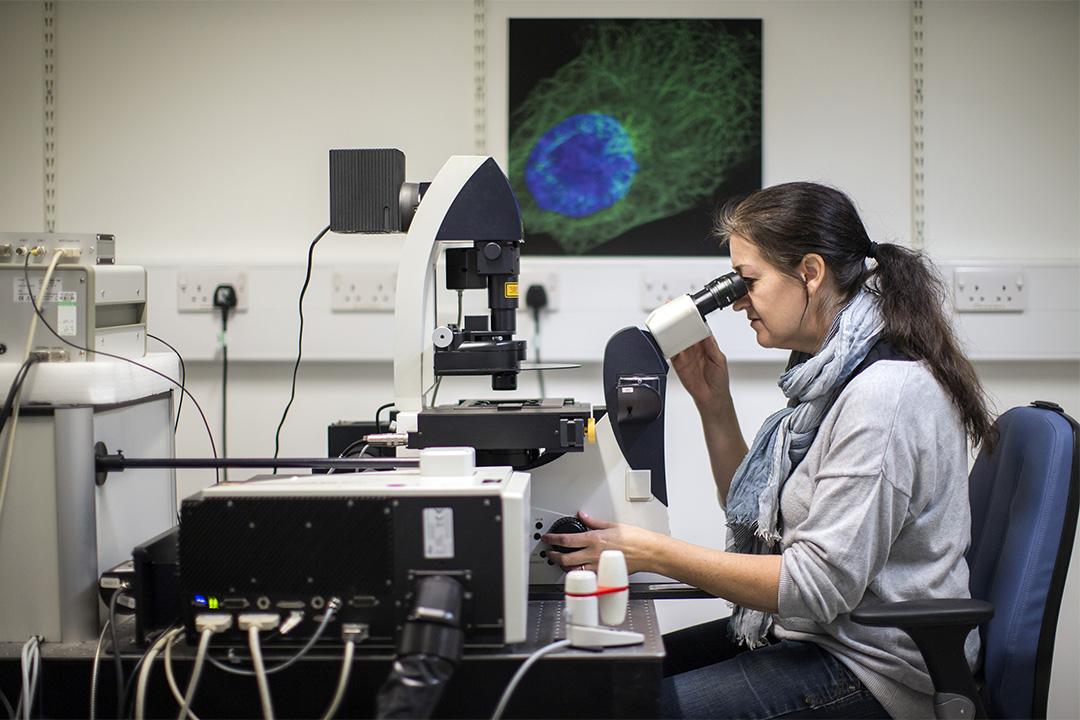 英國一間癌症研究實驗室。