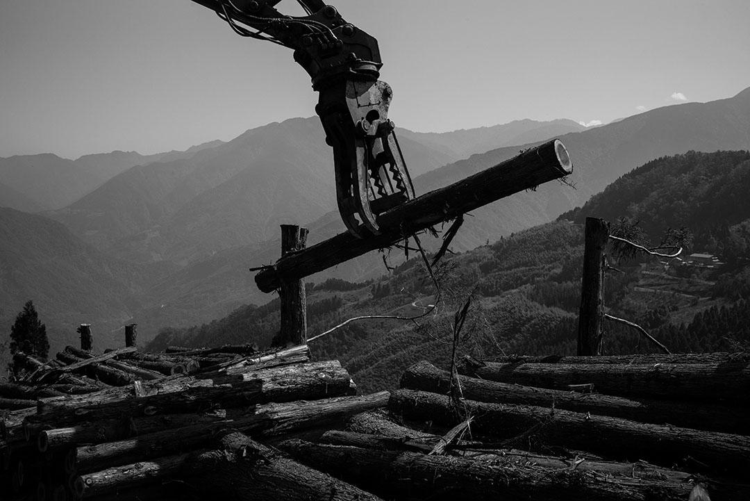 台灣是馬來西亞第二大木材出口國。