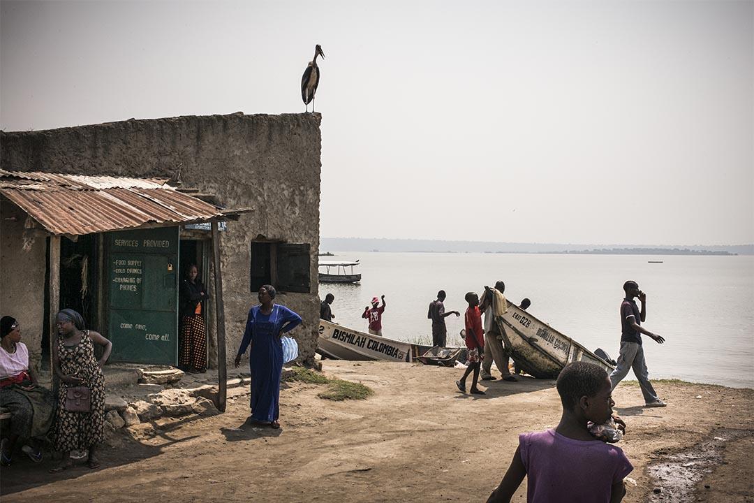 2016年2月,烏干達卡推(Katwe, Uganda),無國界醫生的團隊逐家逐戶地為烏干達卡推的民眾進行愛滋病病毒測試。