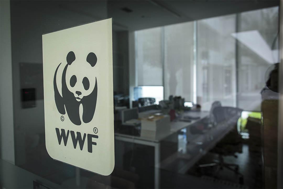 世界自然基金會的深圳辦公室。