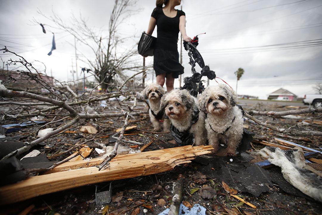 2017年2月7日,美國新奧爾良,一名居民於龍捲風消散後,重回已被破壞的家園。
