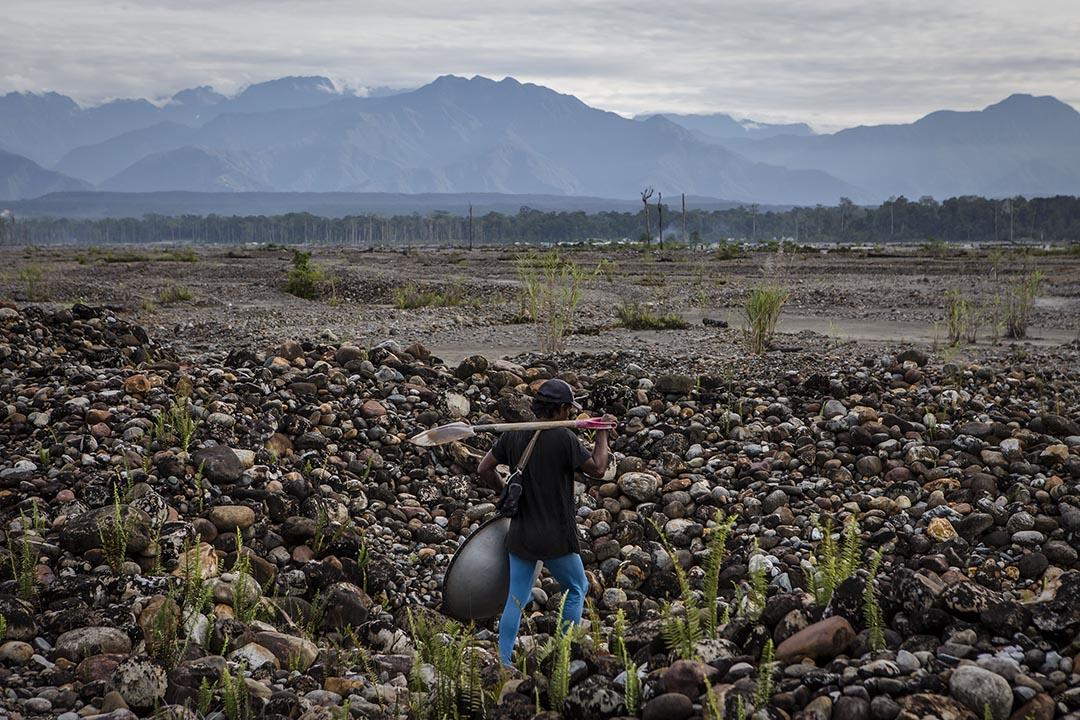2017年2月4日,印尼帕瓜,一名礦工於荒地上步行。印尼每年開採超過總值700億美元的黃金,當地非法開採礦石問題嚴重,造成環境問題。當地土著部落,如Kamoro 表示因過度開採令河床上升,損害魚,牡蠣和蝦的生長,影響賴以這些海洋生物作食物的土著部落生活。