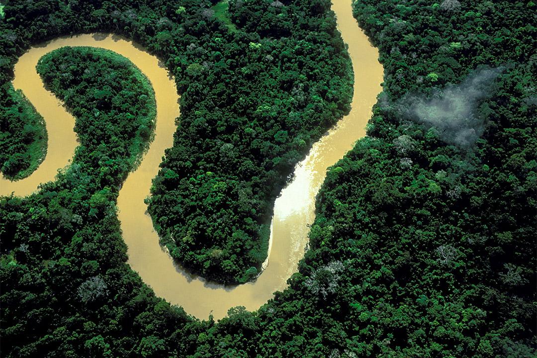 關於亞馬遜盆地的傳統想法:一片無窮無盡的原始森林。森林確實存在,但人類長久以來一直是這座森林不可或缺的元素。