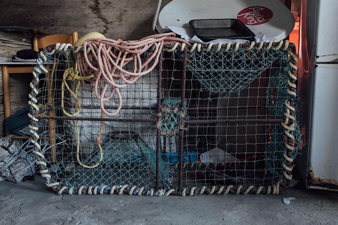 在西開普省沿岸小城豪特灣(Hout Bay)一個名為漢貝格(Hangberg)漁鄉,偷獵者Louis家中放有用作捕魚與小龍蝦的漁網。