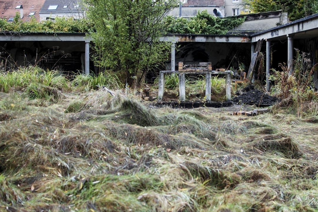 巴黎很多樓房閒置多年,庭園離草叢生。