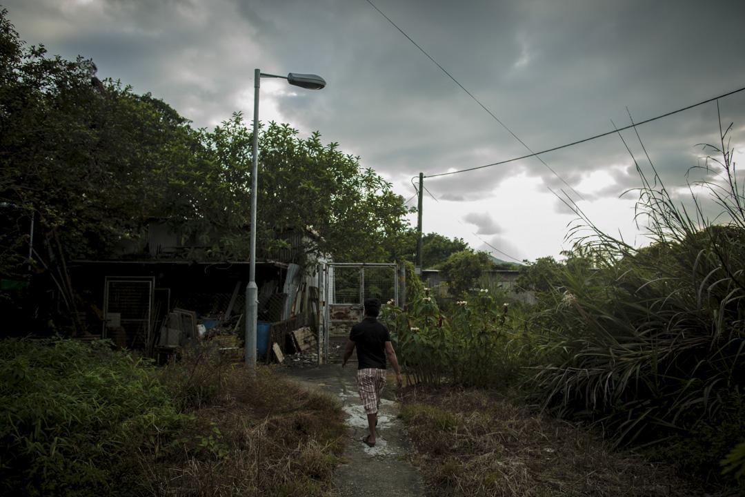 孟加拉難民仍依靠香港國際社會服務社(ISSHK)提供的、每月1500港幣的微薄住屋津貼,聚居在新界北部鄉村坪輋的一列寮屋區。
