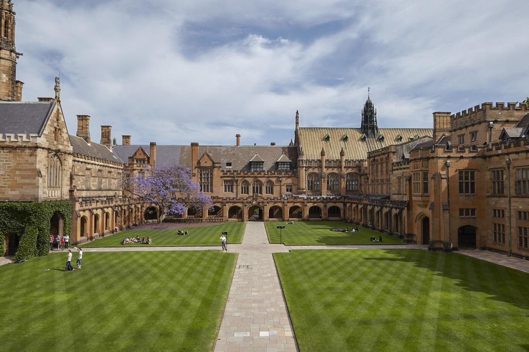 在悉尼大學,中國留學生在國際學生數量中的比重是最大。