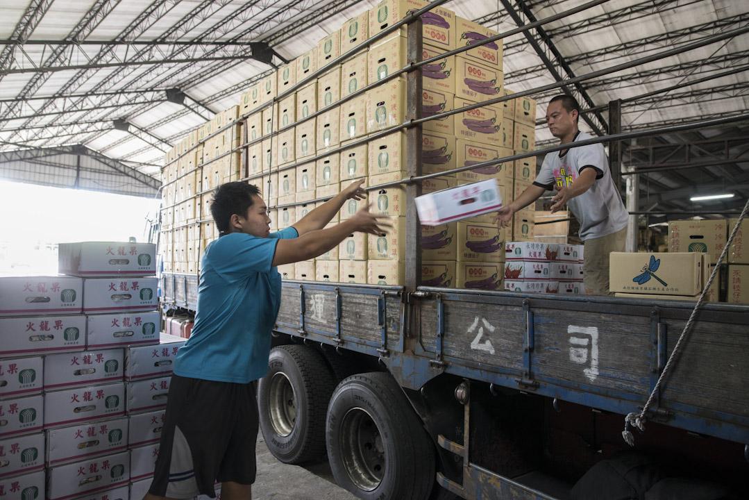 工人將裝滿蔬菜的箱運上菜車,準時從永靖市場出發。