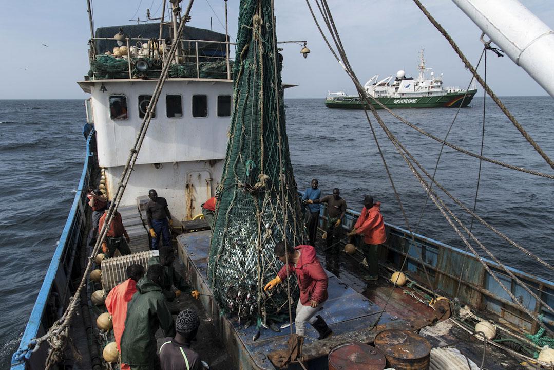 一艘中國漁船在西非海域上捕魚,漁民正在處理打撈到的魚。