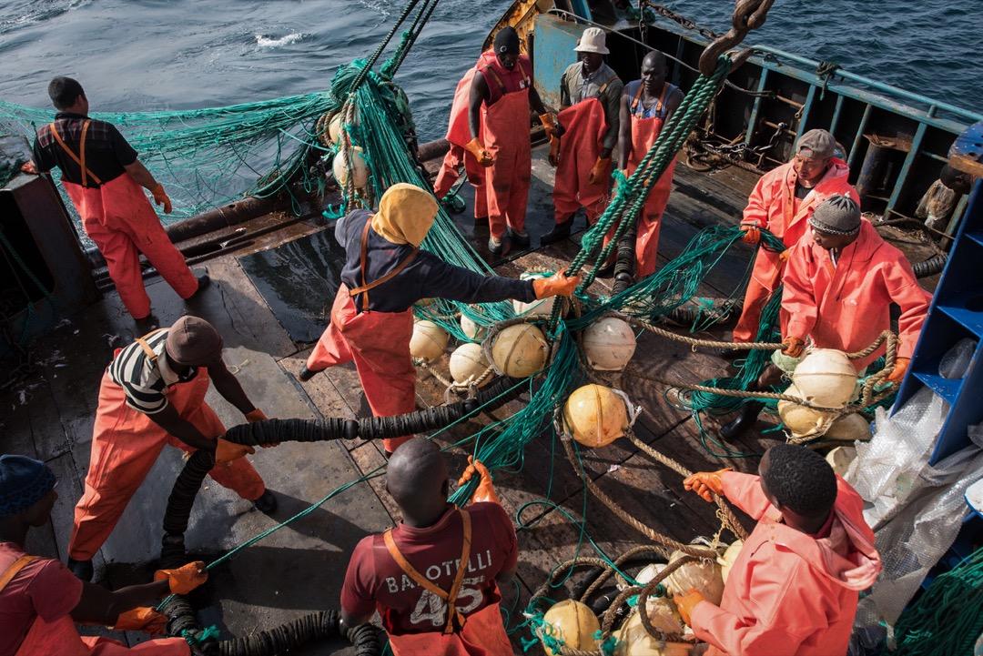 中國漁企爭相到西非生產,仍是看上西非的平價划算、管制鬆散,還有尚未完全枯竭的漁業資源。