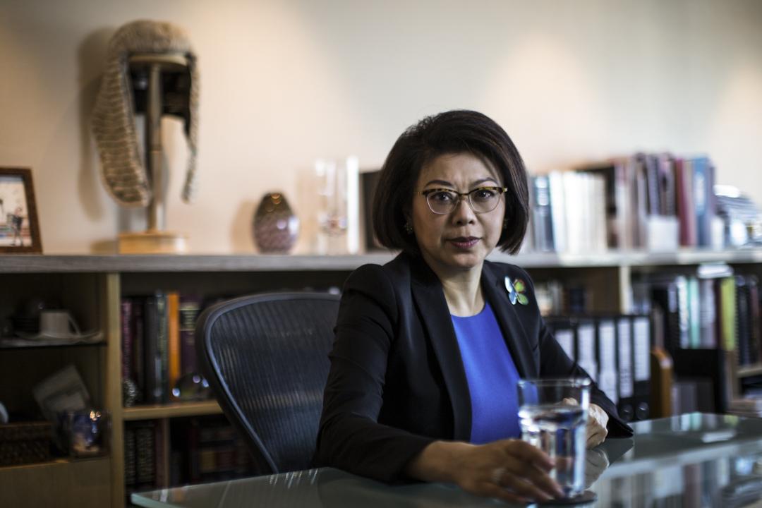大律師公會前任主席譚允芝。
