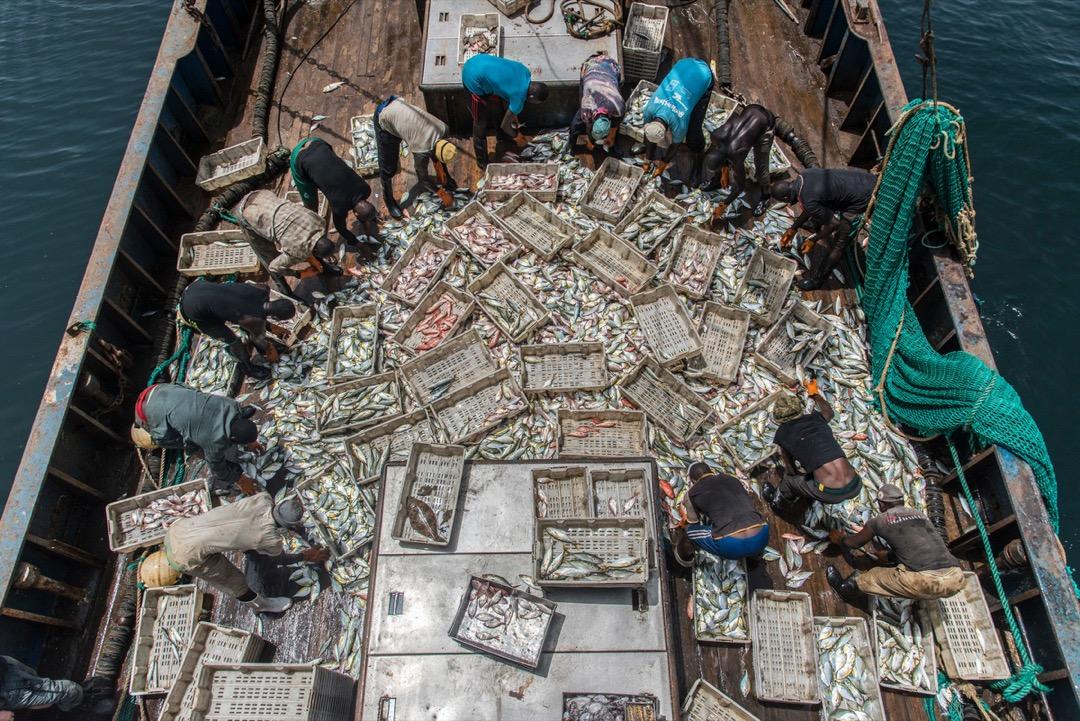 對於這批漁民來說,股海遠不如真實海洋可靠,還是認份打工賺錢實在。