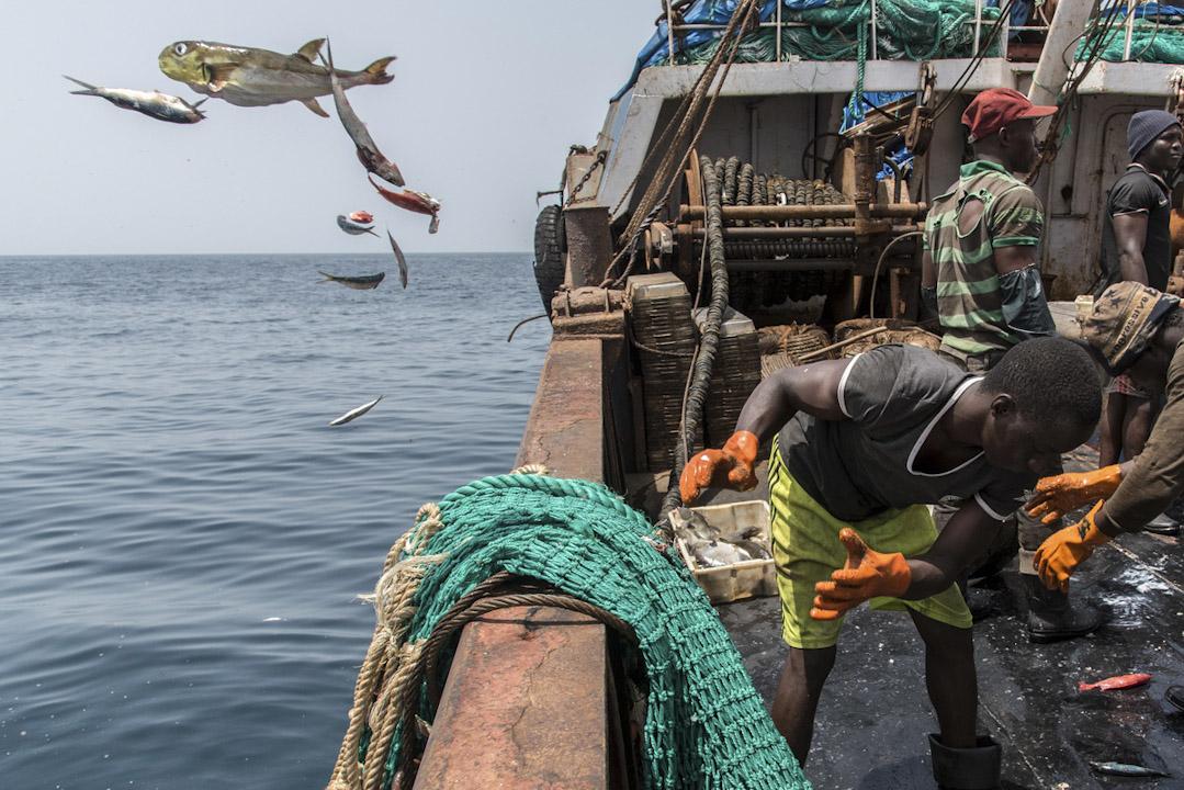 西非海域上,一名非裔漁民在中國漁船上捕魚。 攝:Pierre Gleizes / Greenpeace