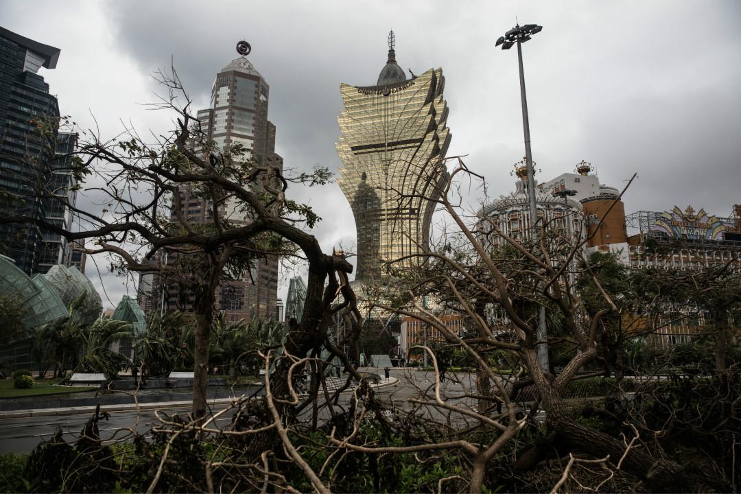 8月27日,澳門遭遇颱風「天鴿」吹襲後,樹木被連根拔起。 攝:Dale de la Rey/Getty Images