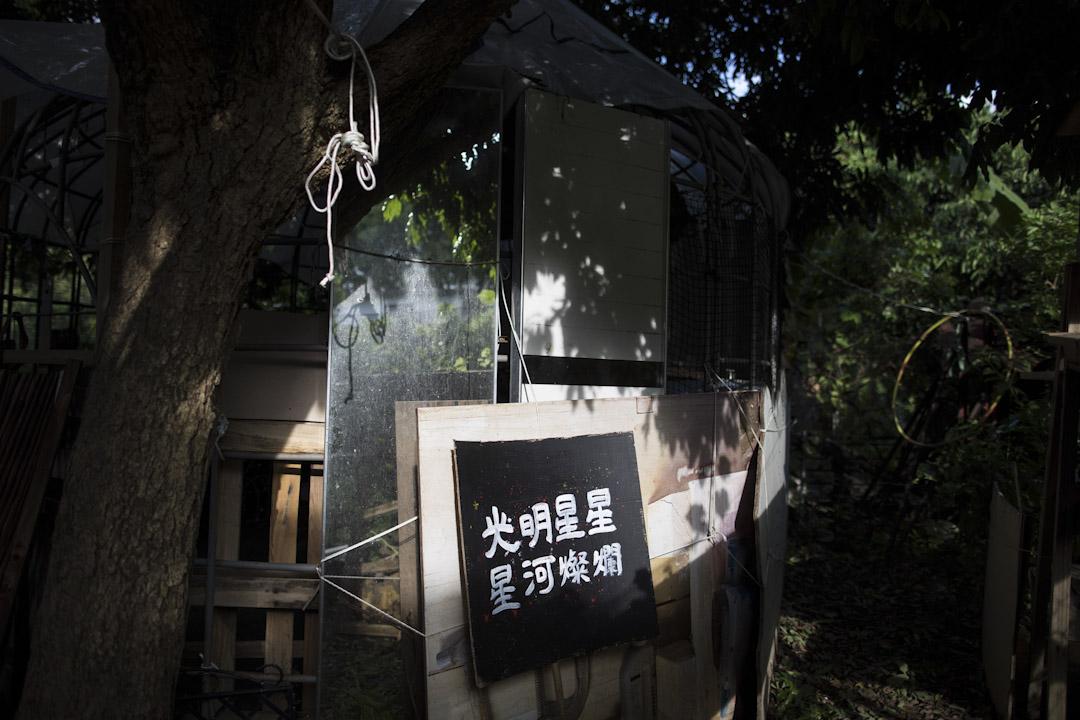 豁然夫妻在古洞建立的綠房子,不僅是他們的家,也是「古洞北發展關注組」根據地,還是豁然成立的「古洞(非人類)動物互助社」的中轉站。