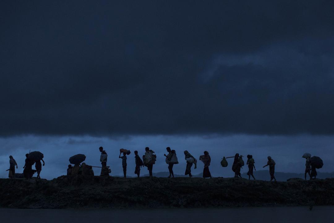 2017年9月9日,羅興亞難民在黃昏時穿越稻田,越過緬甸邊境徒步走向孟加拉。