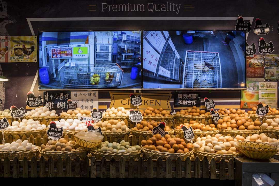 小西灣本灣街市提供 「 i Chicken 」視像揀雞服務。