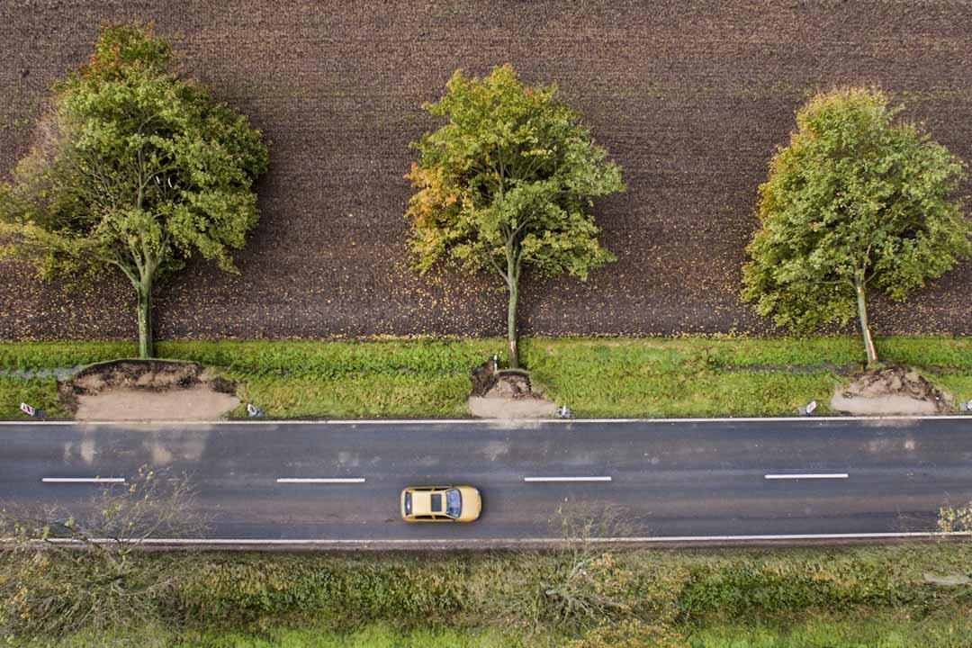 2017年10月6日,德國受強風吹襲,7人死亡,交通受阻。攝影師高空拍攝了希爾德斯海姆(Hildesheim)一條公路旁倒塌的大樹。