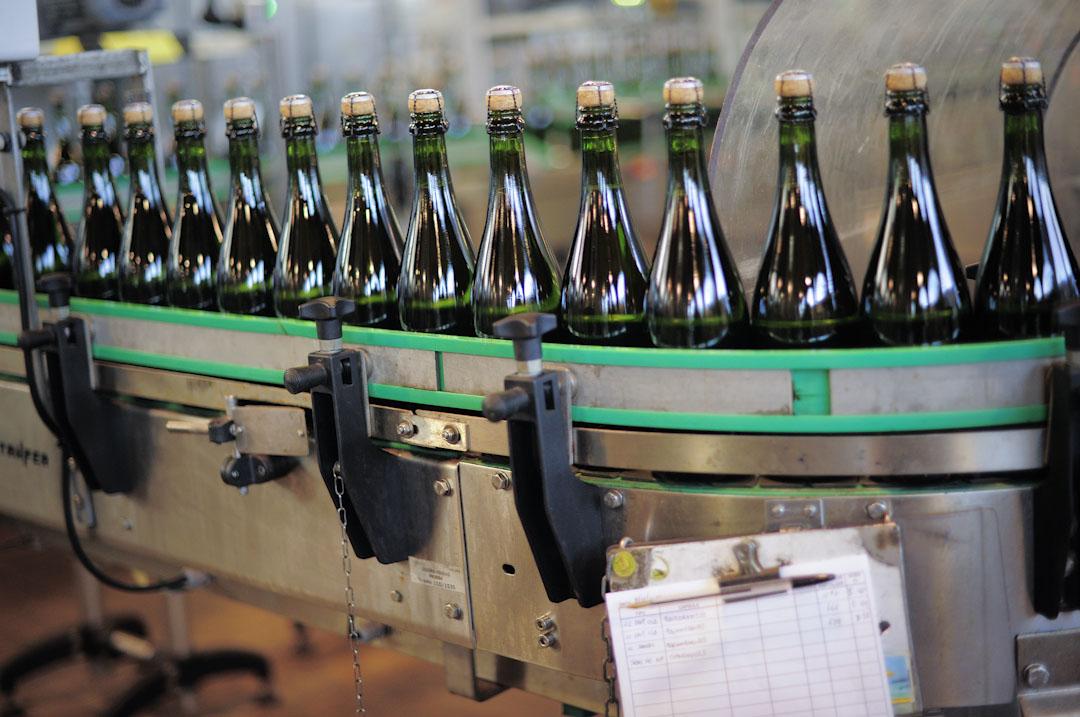 加泰過去不乏在歐洲的貿易夥伴,但就欠缺政治上的盟友。目前,加泰出口至其他歐盟國家的產量,佔整體產量的約三分之二;以加泰特產卡瓦酒(Cava)為例,2016年共出口1.12億瓶至其他歐盟國家,而出口至西班牙(包括加泰本地)的就只有8600萬瓶。圖為一間加泰特產卡瓦酒酒廠生產情況。