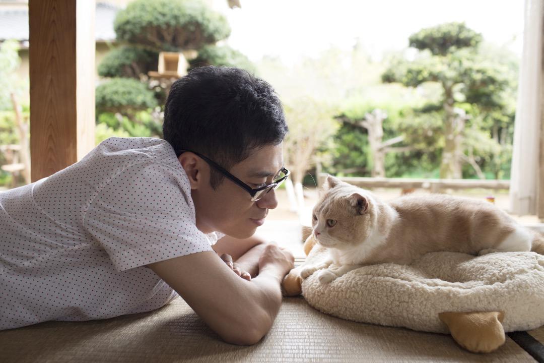 《貓咪來我家》電影劇照。 圖:香港亞洲電影節提供