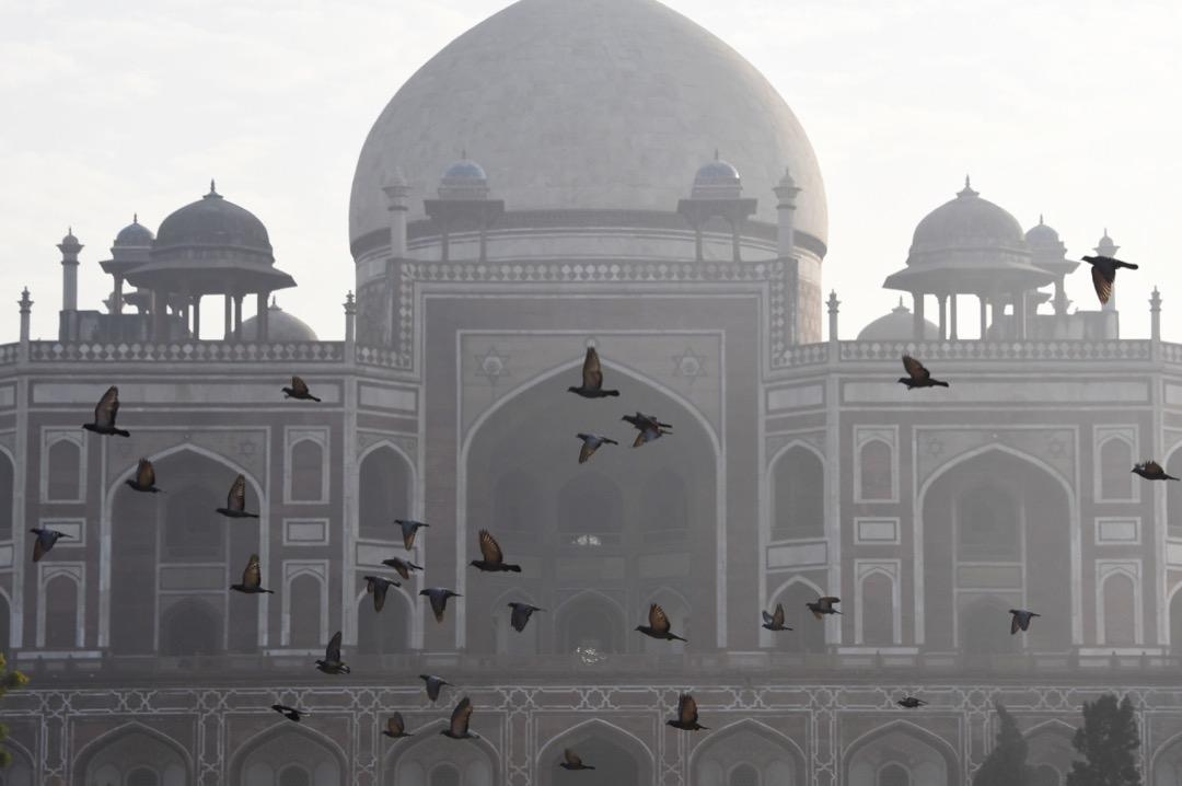 2017年12月6日,印度首都新德里,鴿子在胡馬雍陵前飛過。