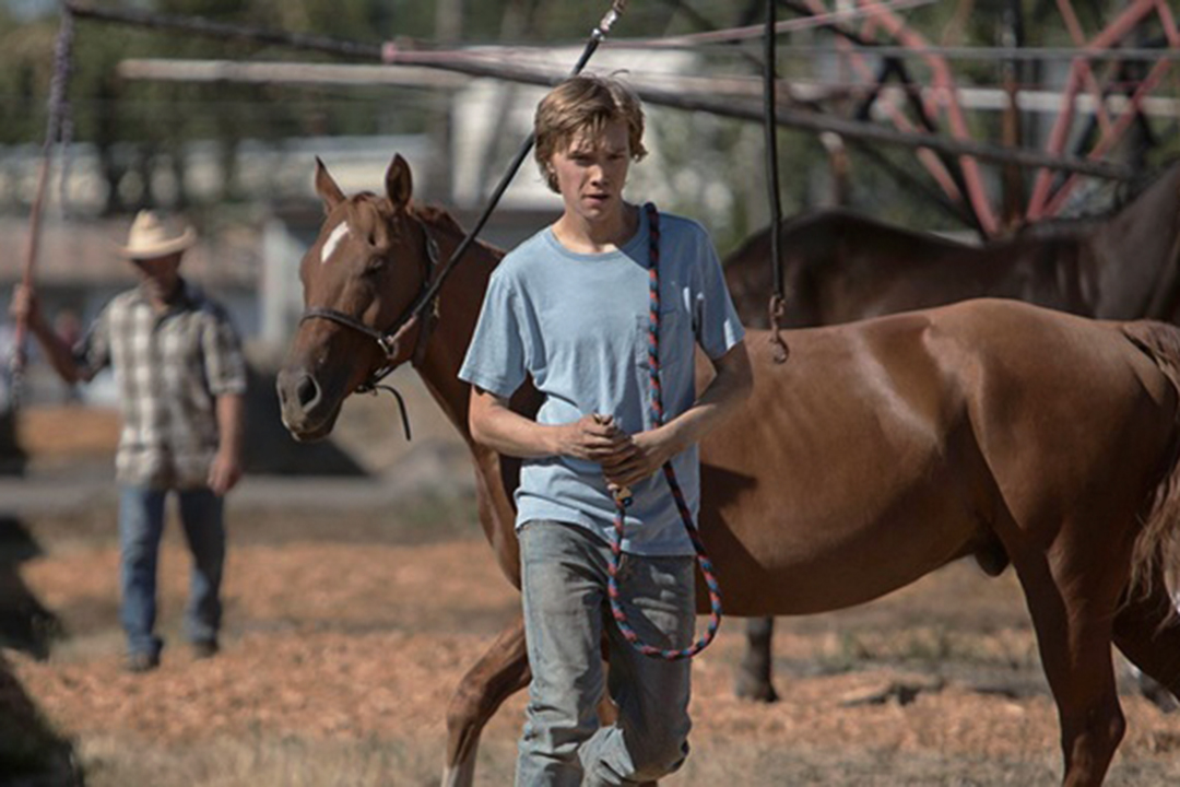 電影《Lean On Pete》劇照 。