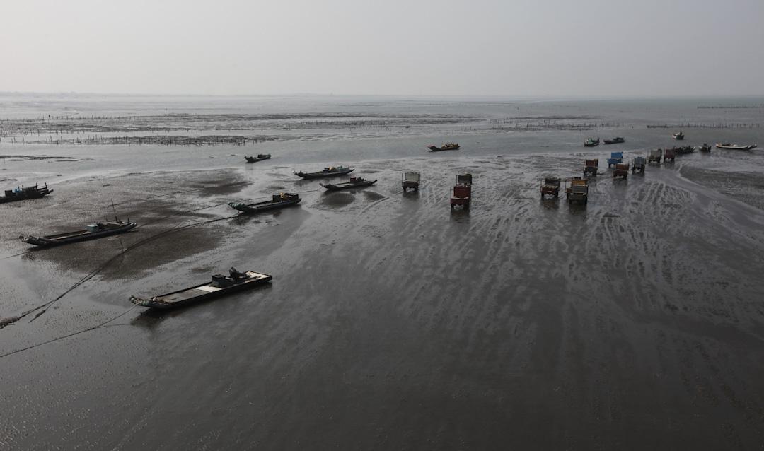 2011年3月,彰化芳苑濕地與牡蠣養殖區。