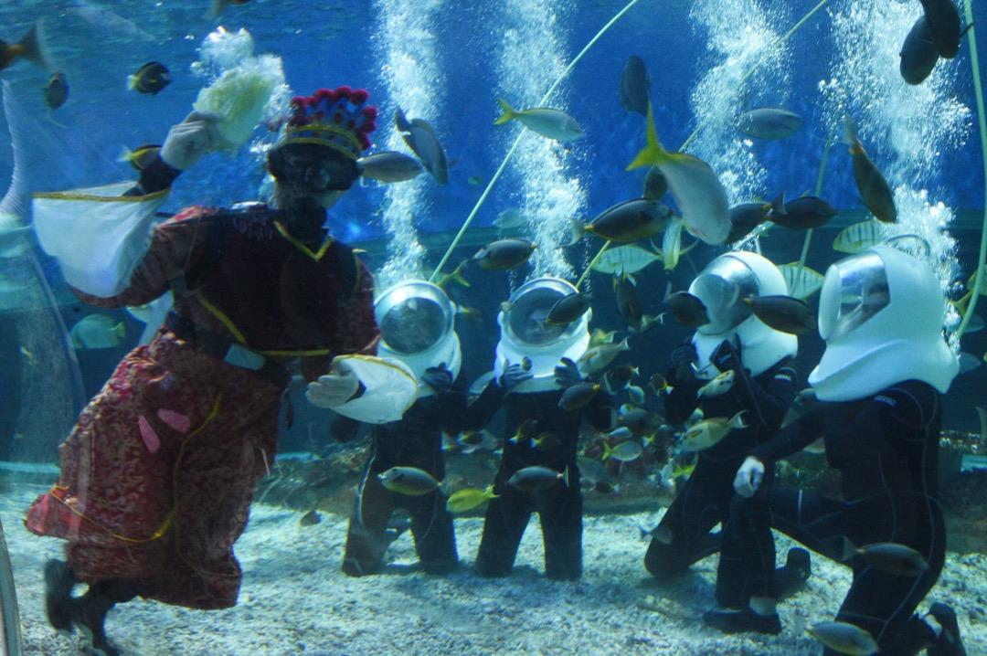2018年2月16日,菲律賓馬尼拉,一名裝扮成財神的表演者在當地的水族館中與魚共舞,慶祝農曆新年來臨。