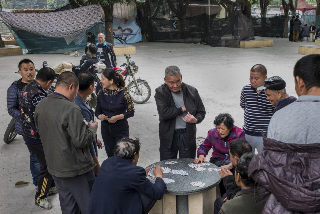 賭博即是社群文化。幾乎家家都有撲克牌、麻將桌。當地人覺得,搞得家破人亡才是賭博,親人朋友聚會則是「小賭怡情」。圖為廣州一個公園,一些村民聚集賭博。 攝:林振東/端傳媒