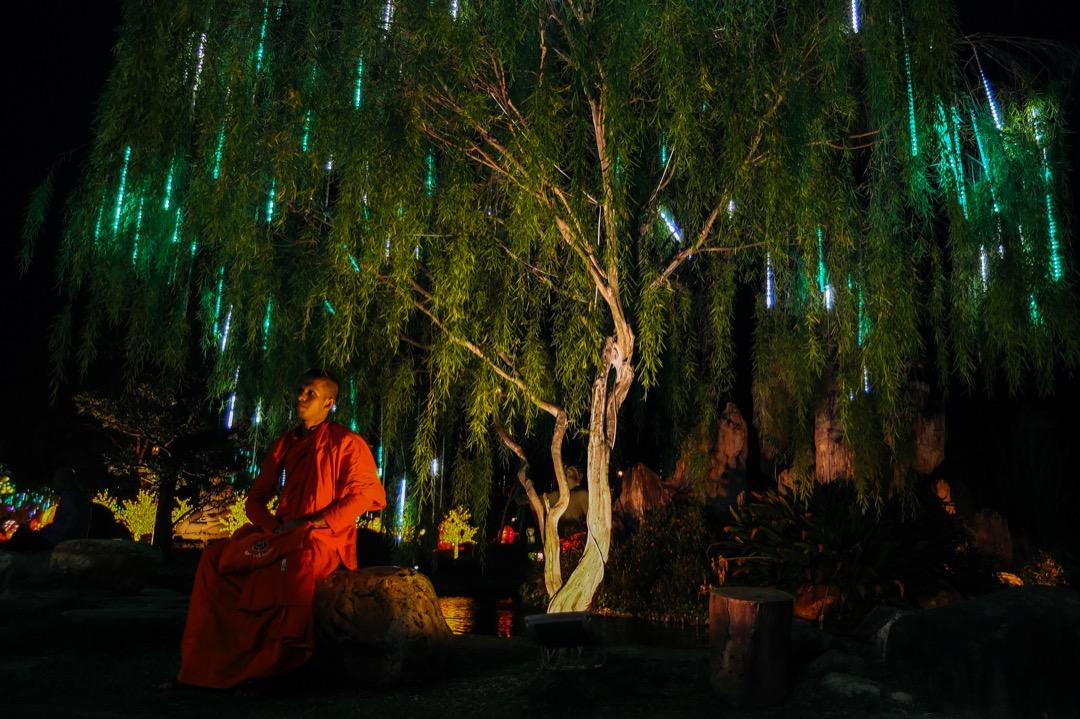 2018年2月14日,馬來西亞首都吉隆坡,一名華籍僧侶坐在佛光山東禪寺的花園裏,花園都掛滿了新年裝飾,準備迎接兩日後的農曆新年。