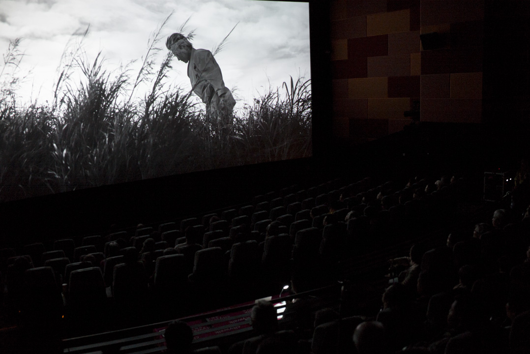 香港盲人輔導會從2009年開始舉辦口述影像放映活動,至今放映口述影像共255場次,參與活動人數約1萬3千人。但能夠在戲院放映的僅有28場。