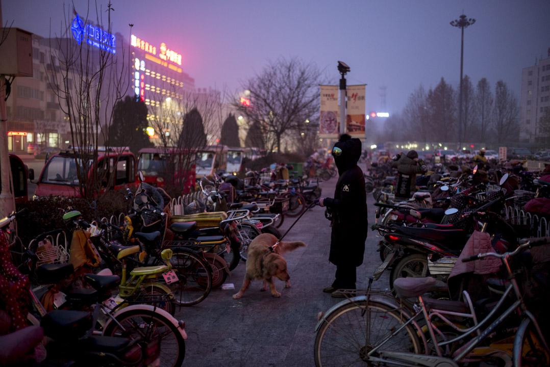 容城唯一的大型商場外,有市民在寒夜中遛狗。