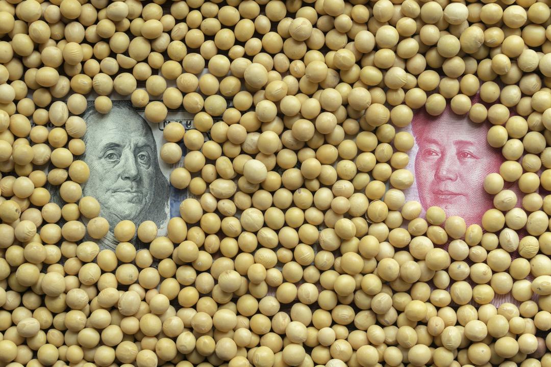 就中方日前公布擬對美國進口大豆等商品加徵關稅,美國總統特朗普將之形容為「不公平的貿易報復」,並宣布已指示貿易代表處研究再向總值1000億美元的中國商品徵收關稅。 攝:Zhang Peng / Getty Images