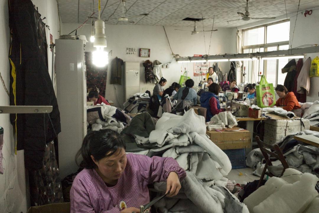 以中國政府的數據觀之,浙江在2013到2015年使用機器換人,據稱減少了近兩百萬勞工,其他製造業大省,像是廣東、安徽、山東同樣強力推進自動化。