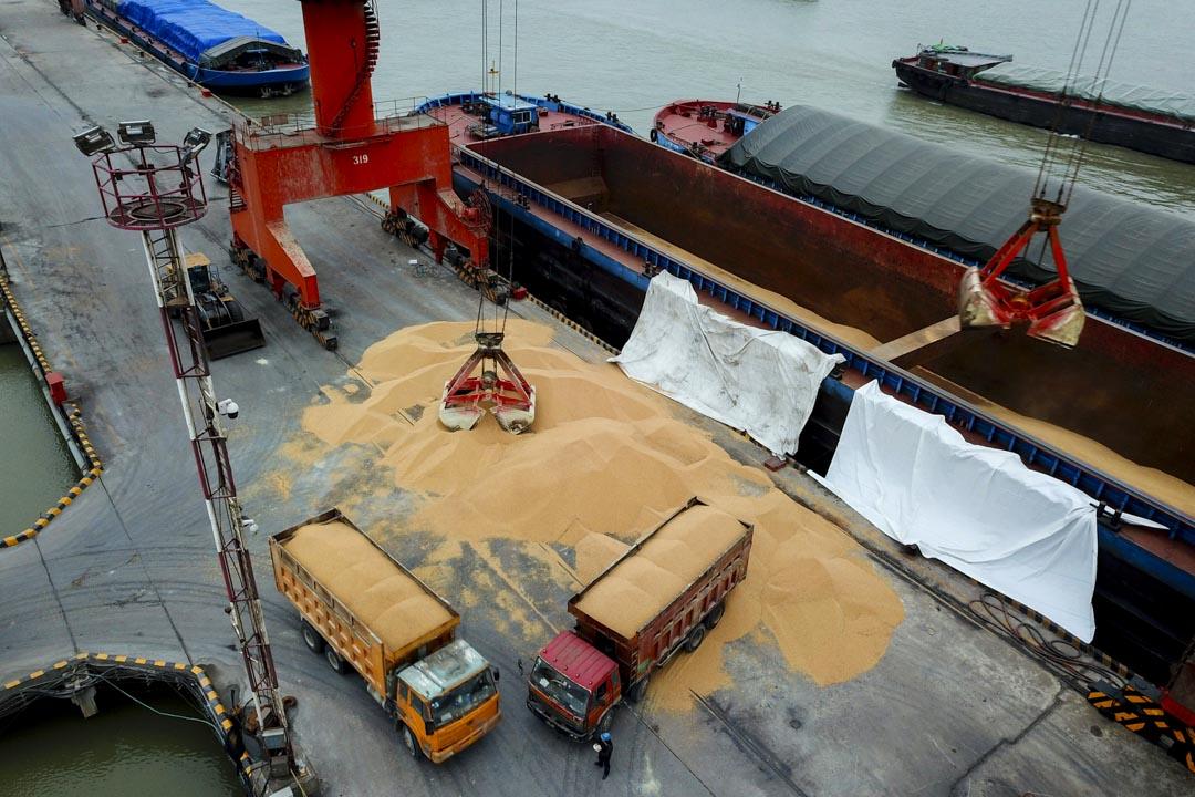 現在美國一年出口中國的貨物也不過1300億美元,即便中國能對等地降低關稅,甚至給人民幣升值,也無法制度性地實現這麼大的進口。如果一定要出口,很可能只是把原先出口到其他國家的貨物轉為出口到中國而已。圖為江蘇南通港口的工人將進口大豆裝載到卡車上。