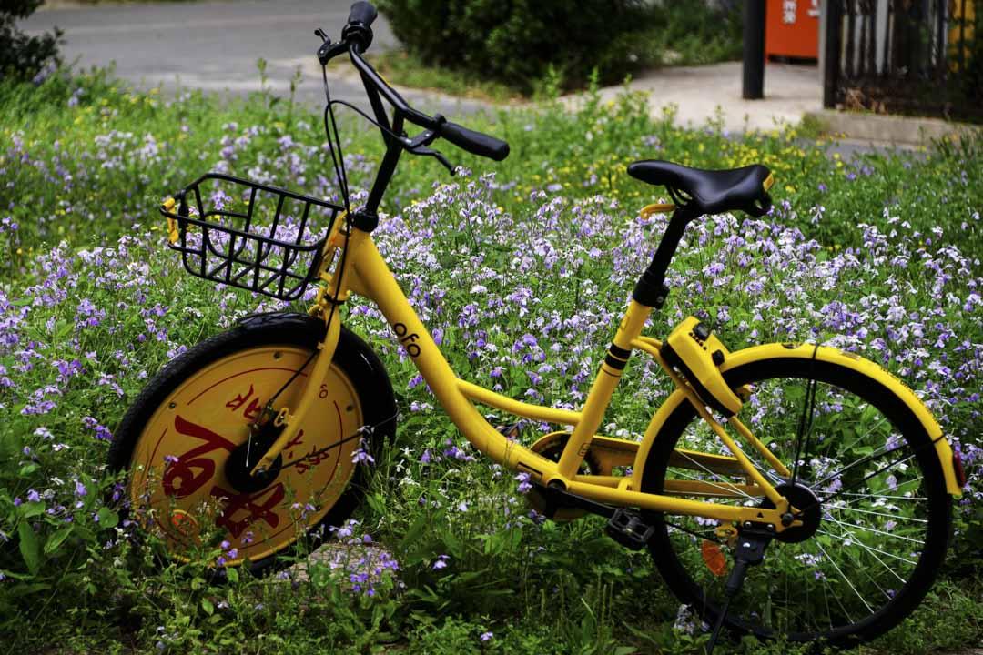 為慶祝北京大學建校120週年校慶,共享單車推出北大建校120週年版單車,主要特點是在前輪上印有「北京大學百廿」字樣。