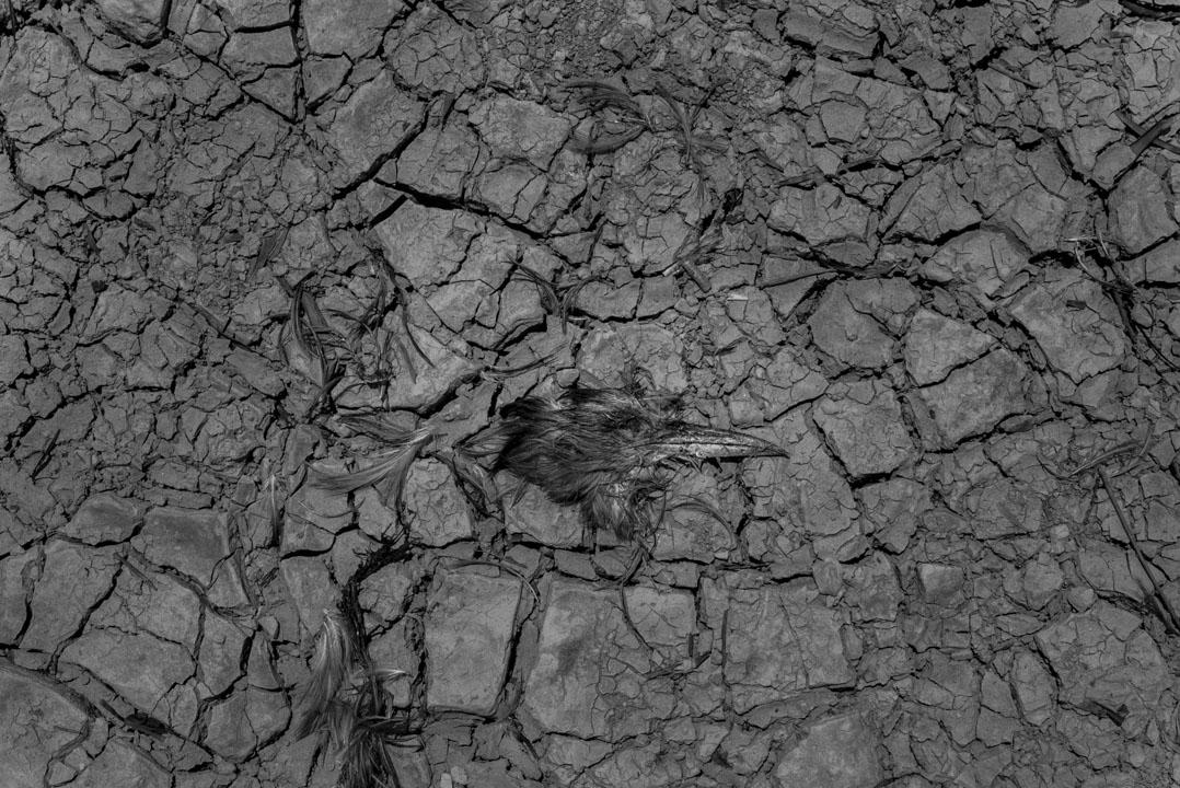 流水響水塘。 攝:林振東/端傳媒