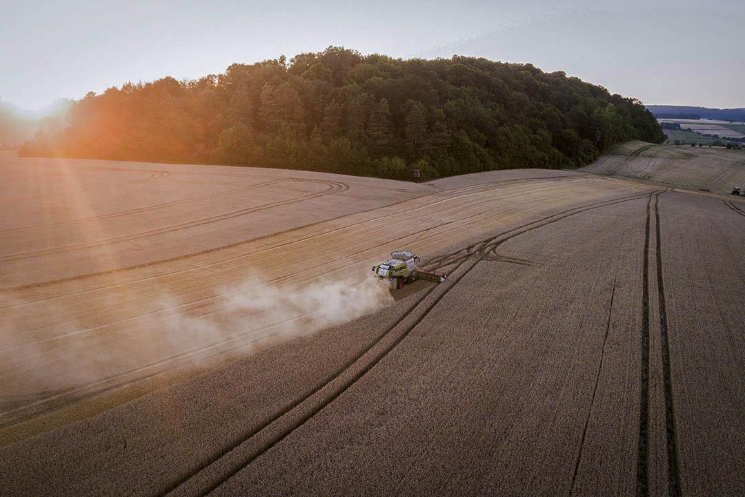 2018年7月16日,德國城鎮哥廷根,一輛收割車於日落時分在麥田收割小麥。自德國130年前有紀錄以來,這年的是當地經歷過最炎熱的夏天,乾旱的天氣也影響了小麥的收成。